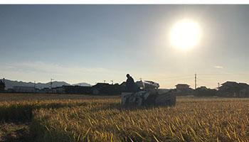 農業に しっかり 寄り添う