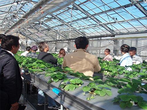肥料メーカー研究圃場の視察