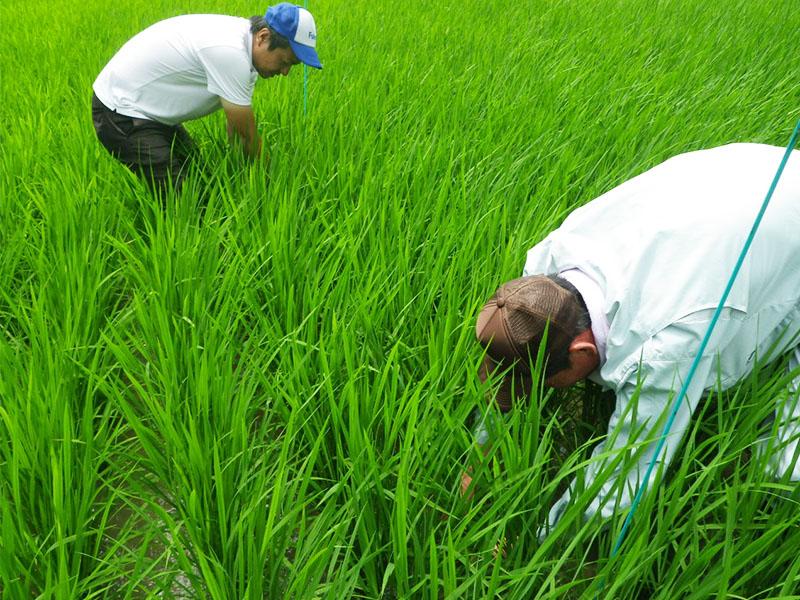 変化し続ける、農業の経営環境